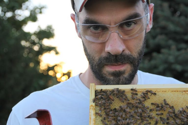 7495 – Bee-keeping and honey with Kacey Nelson